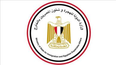 صورة مصر توجه رسالة مهمة للراغبين في العودة لعملهم بالخارج