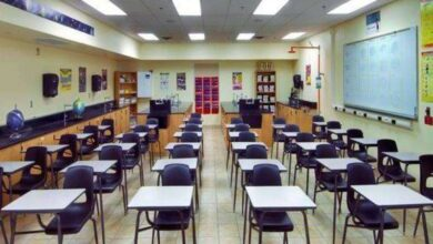 صورة المدارس الأجنبية منخفضة الكثافة.. دوام يومي بفترة واحدة